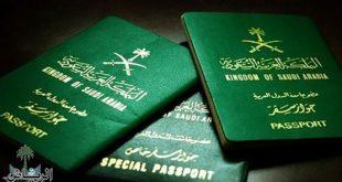 جوازات السفر المميكنة
