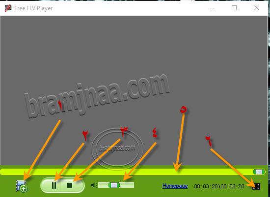 FLV Player 8