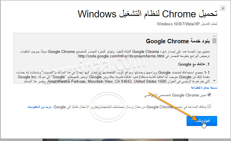 Google Chrome 2