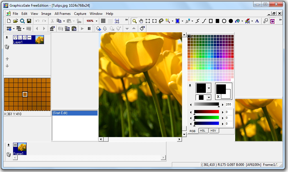 graphicsgale free edition1