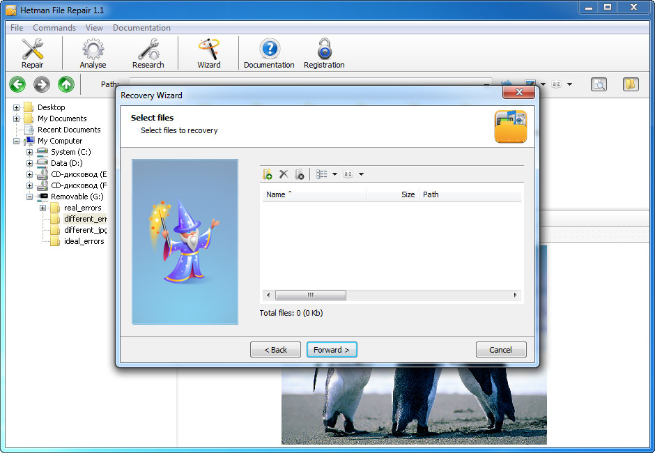 تحميل برنامج Hetman File Repair لاصلاح الملفات التالفة علي الكمبيوتر