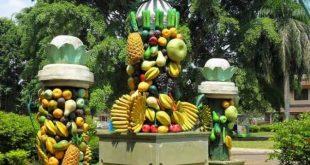 حديقة الفواكه بونشاك