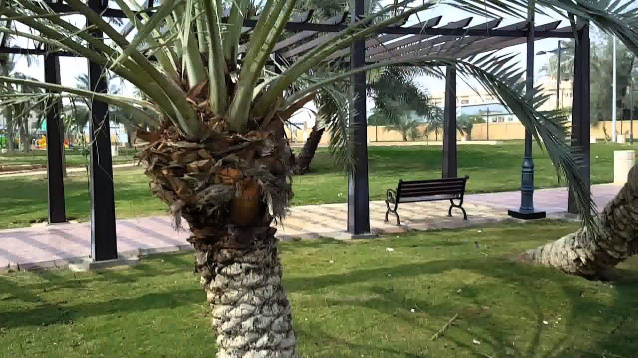 حديقة وودى الرياض
